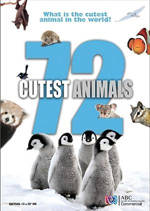 72 大可愛動物 | awwrated | 你的 Netflix 避雷好幫手!