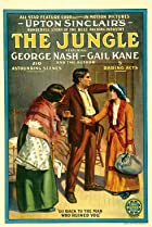 The Jungle (1914) Poster