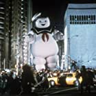 Billy Bryan in Ghostbusters (1984)