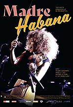 Madre Habana