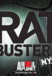 Rat Busters NYC Poster