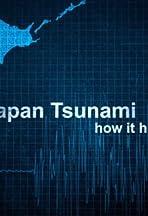 Japan Tsunami: How It Happened