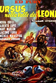 Valley of the Lions Poster