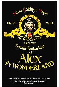 Alex in Wonderland Poster - Movie Forum, Cast, Reviews