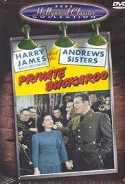 Private Buckaroo Poster
