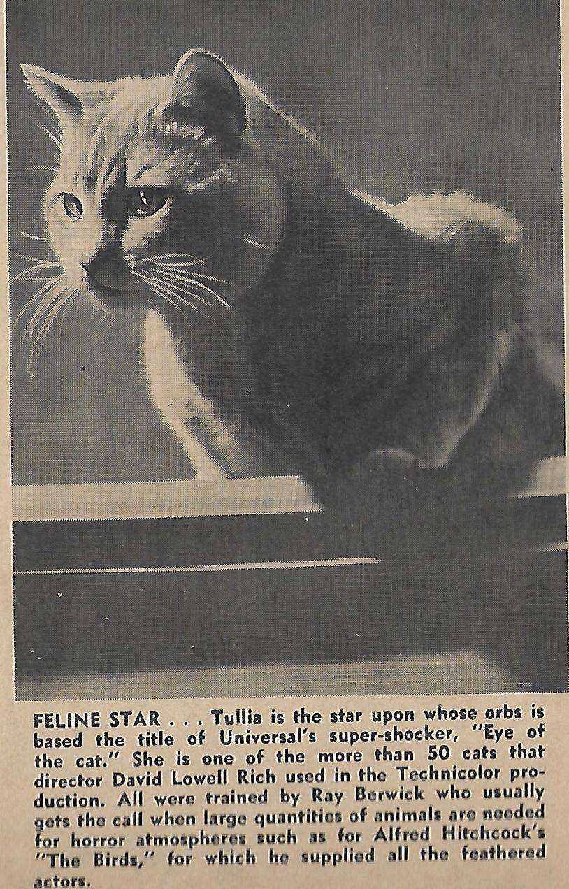 Tullia in Eye of the Cat (1969)