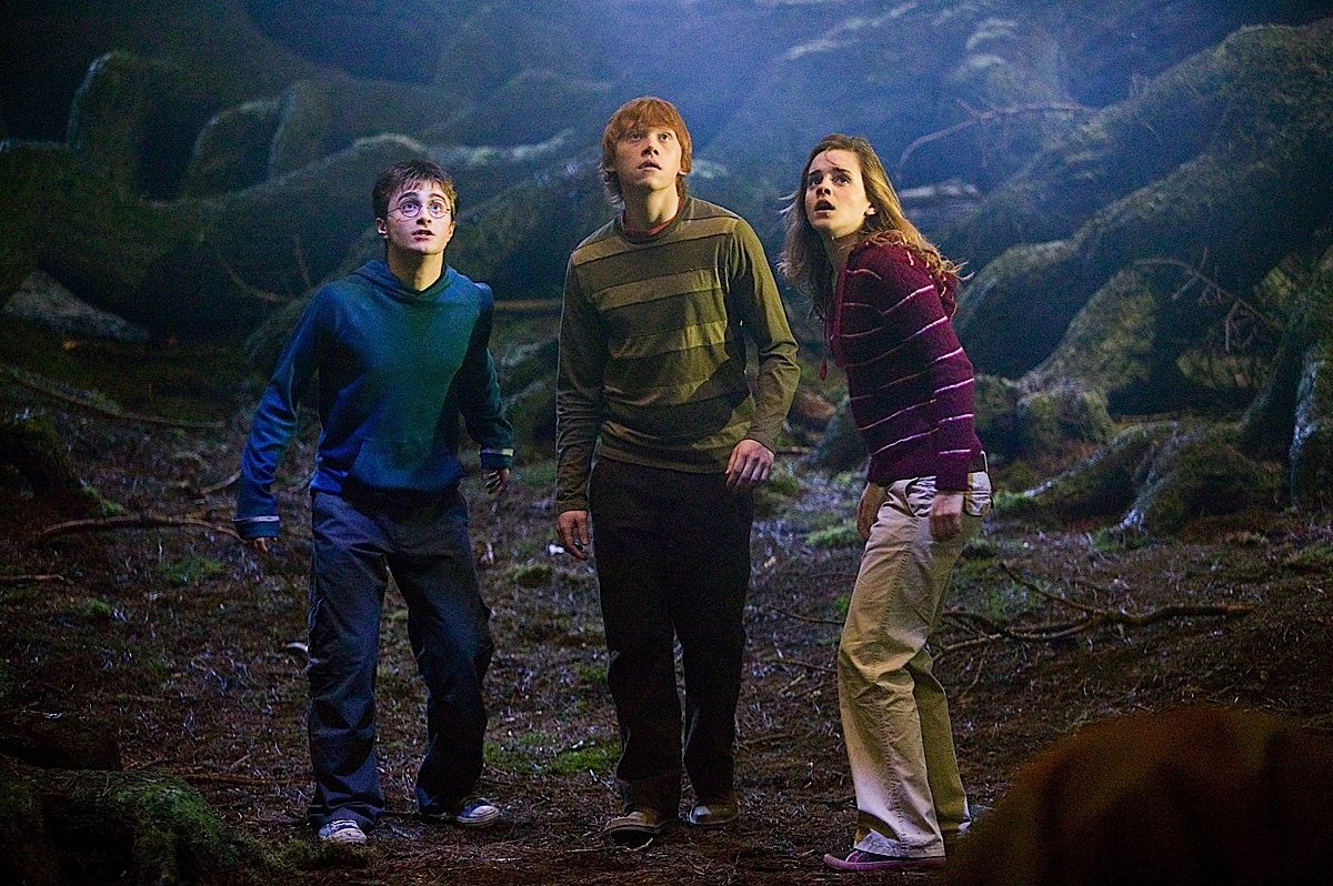 Rupert Grint, Daniel Radcliffe, and Emma Watson in Harry Potter and the Order of the Phoenix (2007)