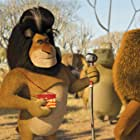 Alec Baldwin and Ben Stiller in Madagascar: Escape 2 Africa (2008)