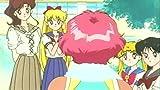 Sailor Moon: Secret Destiny