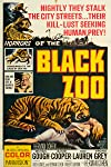 Exclusive: Black Zoo DVD Clip