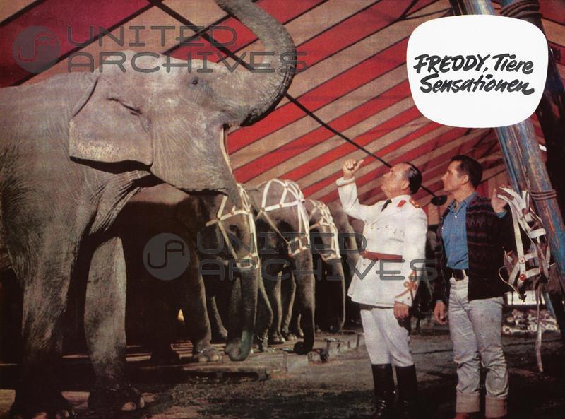 Paul Klinger and Freddy Quinn in Freddy, Tiere, Sensationen (1964)