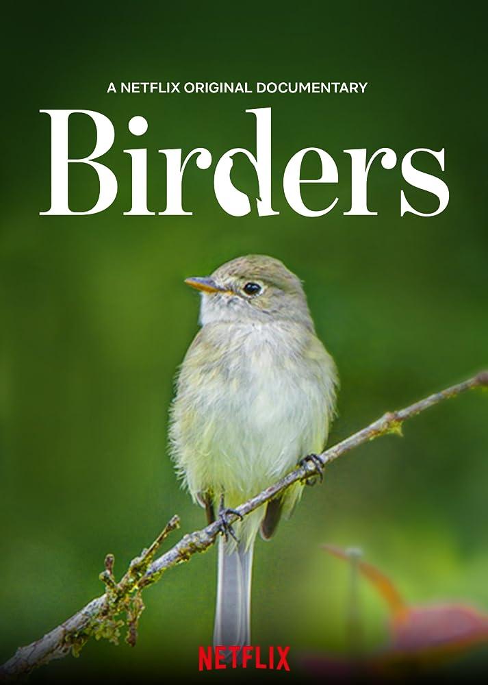Birders (2019) 640Kbps 23Fps DD+ 6Ch TR NF Audio SHS