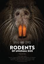 Rodents of Unusual Size