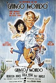 Gringo mojado (1984)