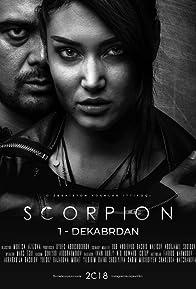 Primary photo for Scorpion