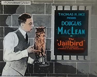 Legal mp4 downloads movies The Jailbird by none [1920x1600]