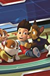 President Trump Is Mad that 'Paw Patrol' Was Canceled — It Wasn't