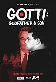 Gotti: Godfather and Son Poster