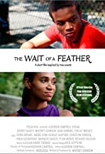 The Wait of a Feather