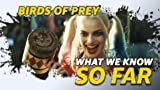 What We Know About 'Birds of Prey' ... So Far