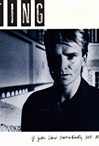 Primary photo for Sting: If You Love Somebody Set Them Free