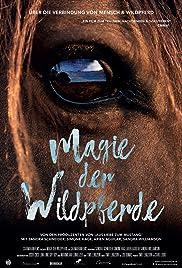 Magie der Wildpferde Poster