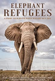 Elephant Refugees Poster