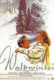Waldwinter Poster