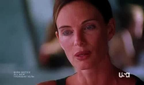 Burn Notice: Partners In Crime