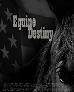 Website for downloading latest hollywood movies Equine Destiny [DVDRip]