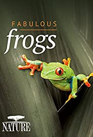 Nature Fabulous Frogs (2014) 1080p