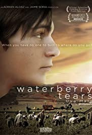 Waterberry Tears Poster