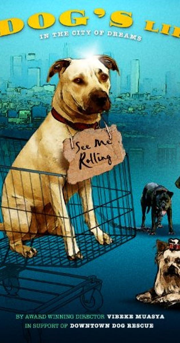 A Dog S Life Tv Movie 2013 Imdb