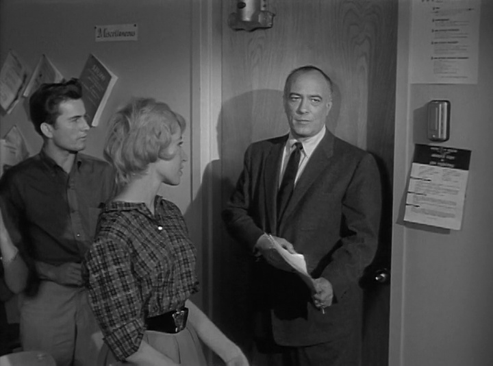 Edward Platt in The Explosive Generation (1961)