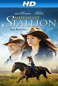 Primary photo for Midnight Stallion
