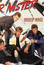 Mr. Mister: Broken Wings