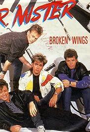 Mr. Mister: Broken Wings Poster