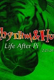 Life After Pi Poster