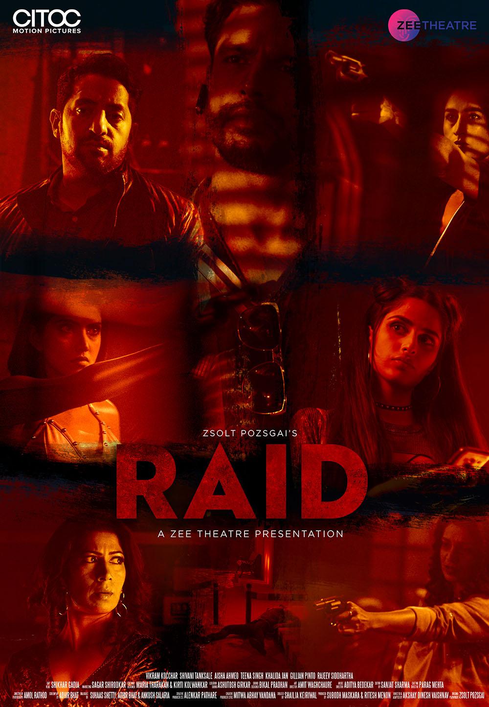 Raid (2019) Hindi Zee5 300MB HDRip 480p Download