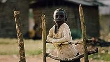 American Piety/Terror in Congo