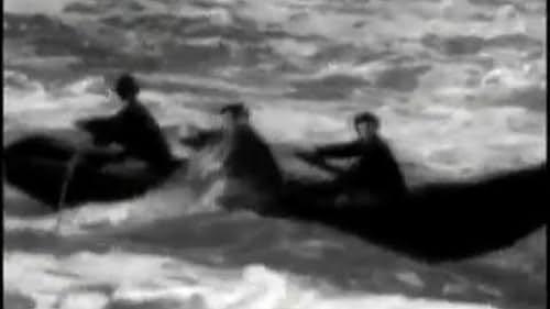 A Boatload of Wild Irishmen