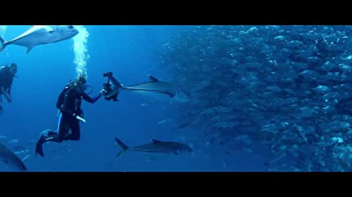 Explore the lives of nine women from around the world who share a passion for the ocean.