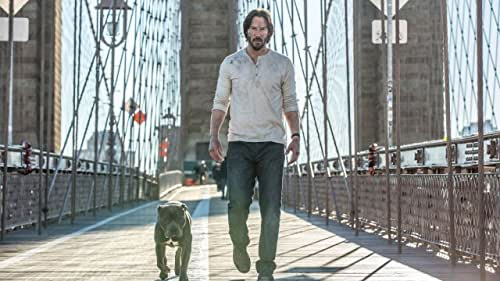 John Wick is forced back out of retirement by a former associate plotting to seize control of a shadowy international assassins' guild. Bound by a blood oath to help him, John travels to Rome where he squares off against some of the world's deadliest killers.