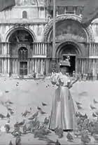 Pigeons sur la place Saint-Marc