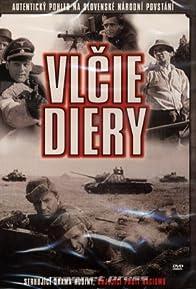 Primary photo for Vlcie diery