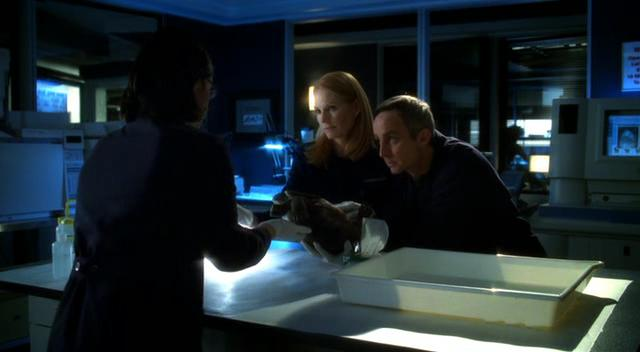 Marg Helgenberger, Wallace Langham, and Sheeri Rappaport in CSI: Crime Scene Investigation (2000)