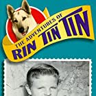 Lee Aaker in The Adventures of Rin Tin Tin (1954)