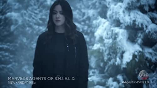 Marvel's Agents Of S.H.I.E.L.D.: The Honeymoon
