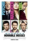 Primary image for Horrible Bosses