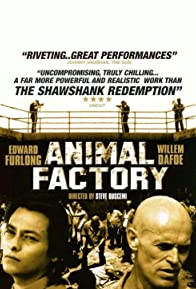 Primary photo for Animal Factory
